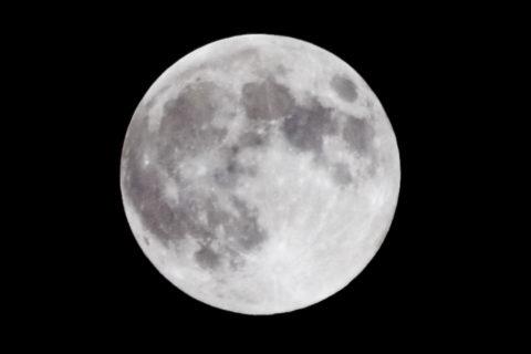 Moon landing history USC Dornsife