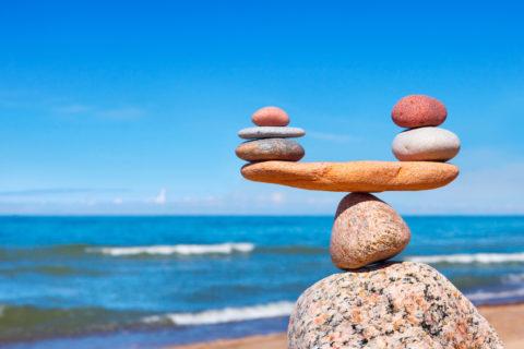 balancing stress resistance SKN-1 gene