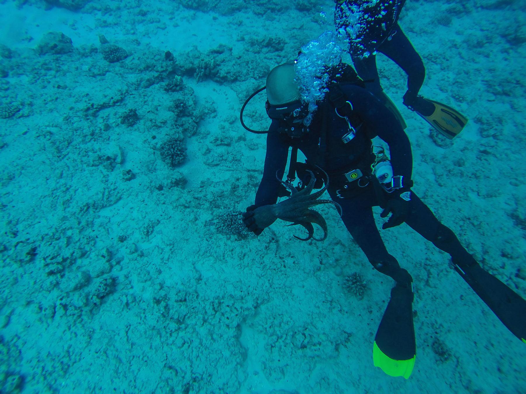 Nicholas Foster scuba diving