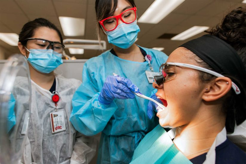 Dental hygiene students work alongside DDS students