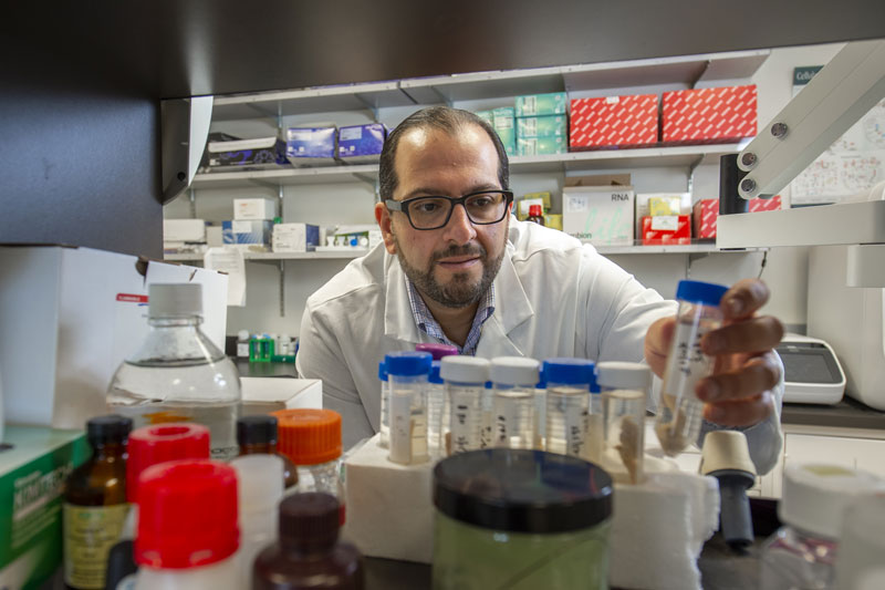 Josh Neman USC neuroscientist