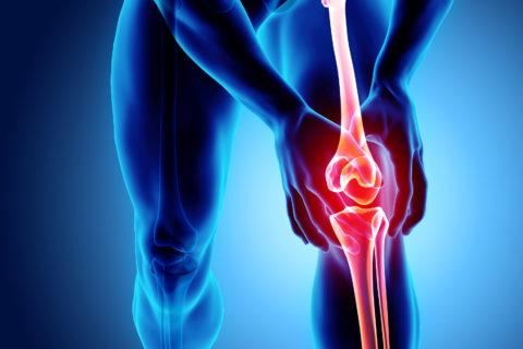 kappa opioid osteoarthritis