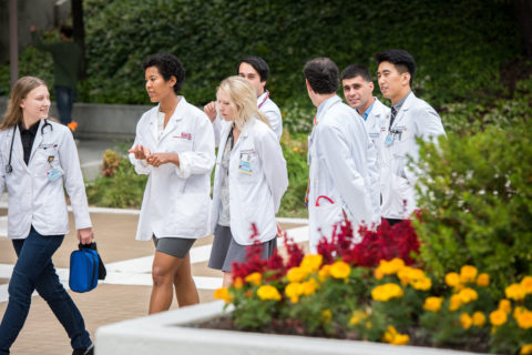 USC medical school Introduction to Clinical Medicine