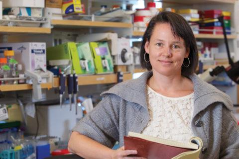 Tracy Grikscheit stem cell scientist