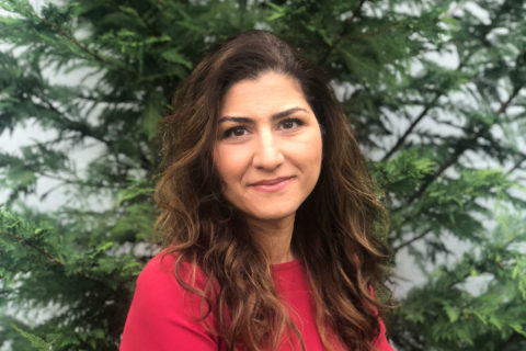 Maryam Shanechi new NIH innovators award