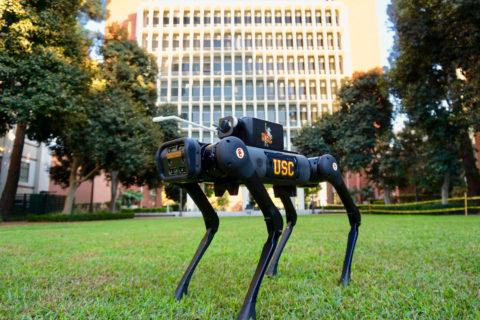 LASER D robot covid-19