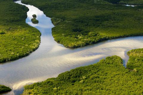 australia wetlands