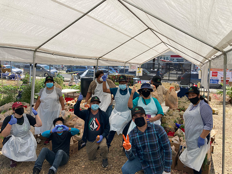 A group of community members in masks, gloves and aprons kneel, sit or stand in front of bags of fresh produce grown in a community garden.