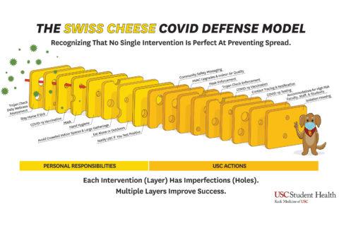 """Swiss cheese"" COVID defense model"