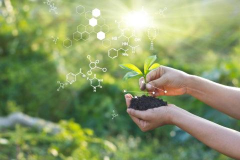 Southern California Environmental Health Sciences Center