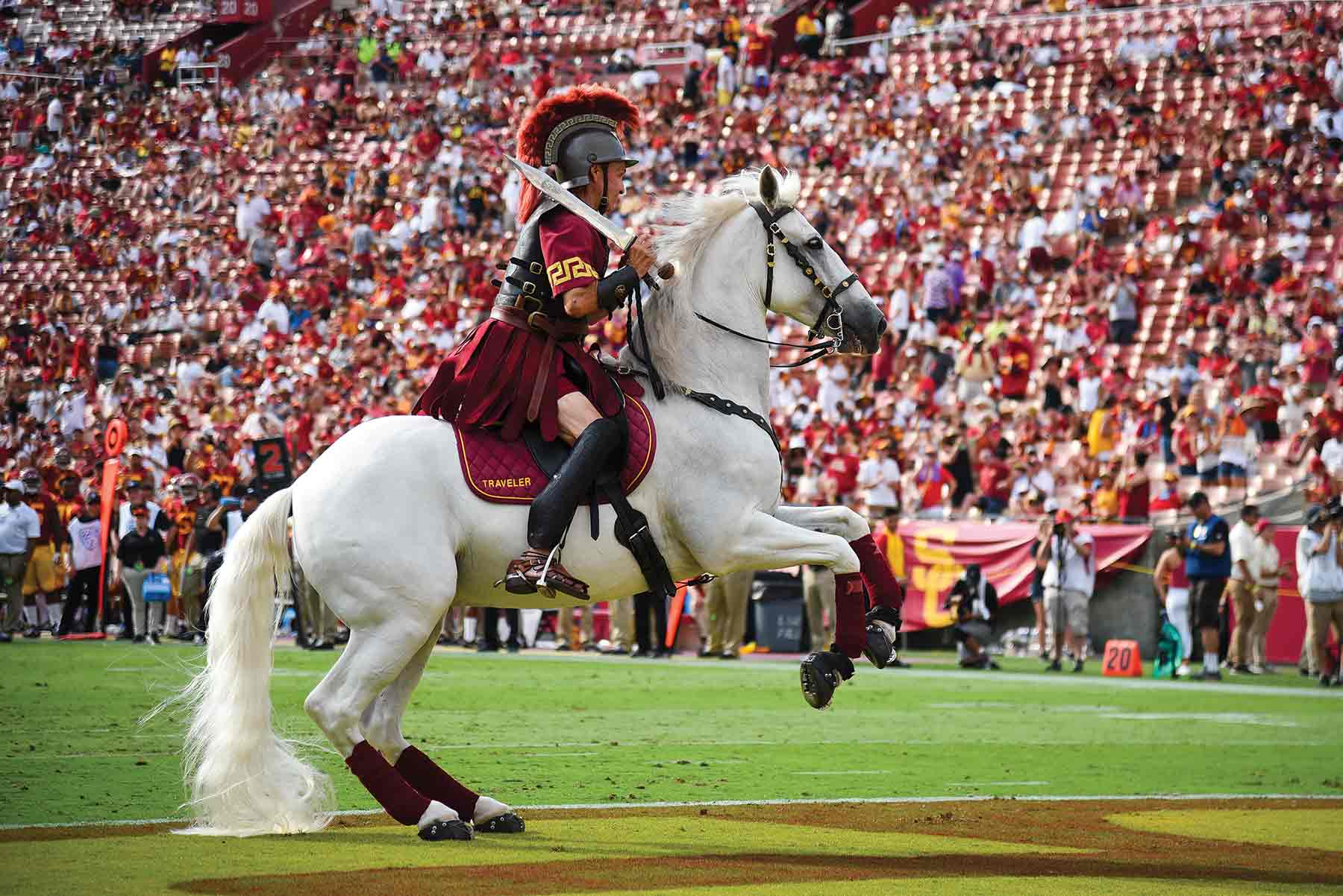 Traveler Ix Gallops Into A Beloved Trojan Tradition